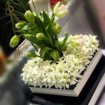Las Vegas Orchids and Event Flowers